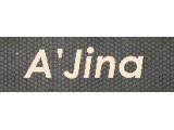Логотип AJina интернет-магазин женской одежды больших размеров