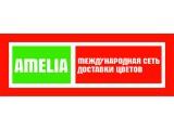 Логотип Амелия - Международная сеть доставки цветов