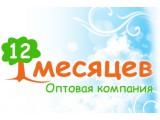Логотип 12 Месяцев, оптовая компания
