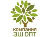 """Логотип ООО """"ЗШ ОПТ"""""""